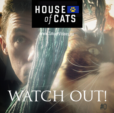 House of cats, poster of this original example of cross media marketing