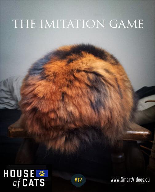 the imitation game - cross media marketing